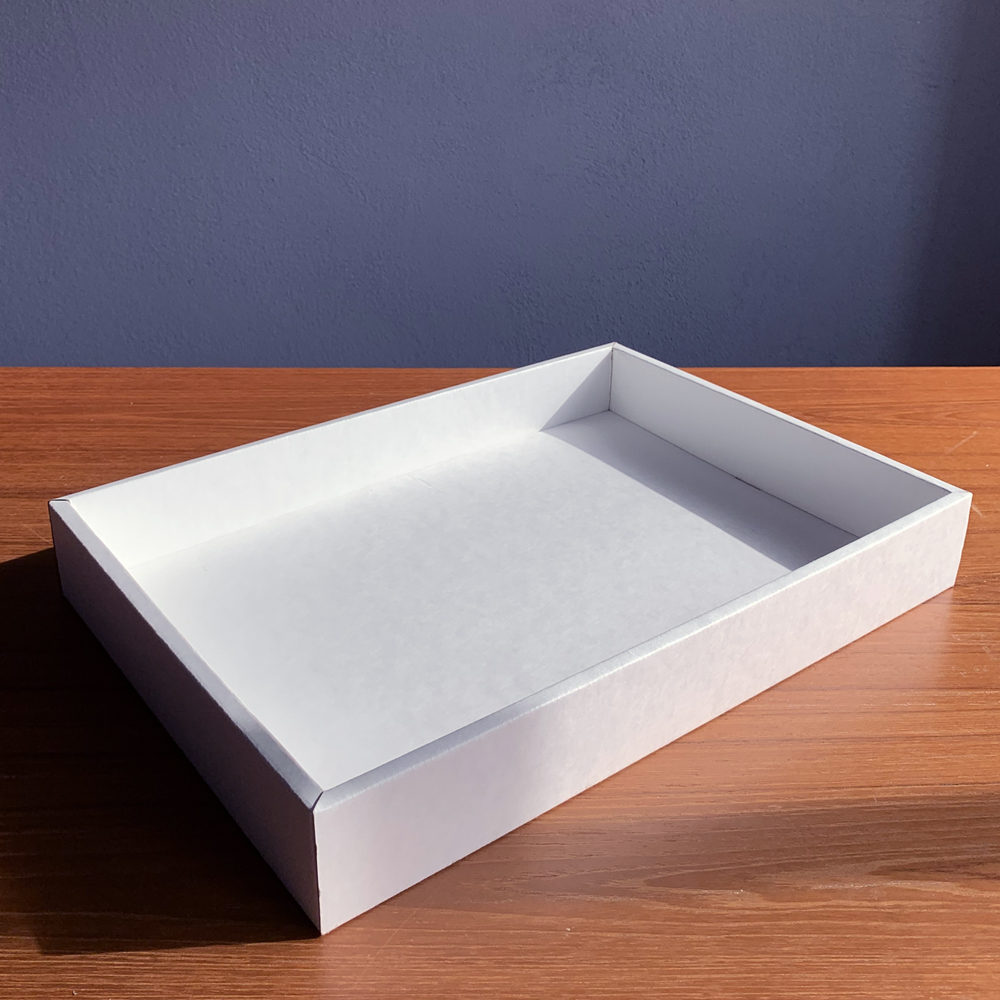 Large Tray Organizer